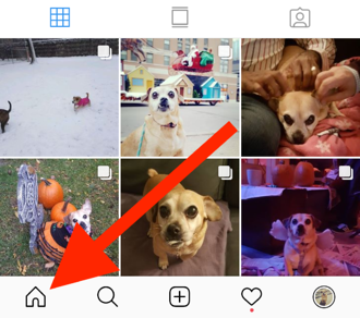 instagram-home-feed