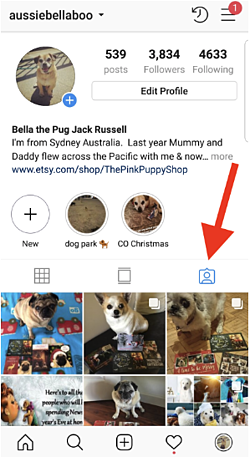 how-to-see-instagram-posts-you-are-tagged-in