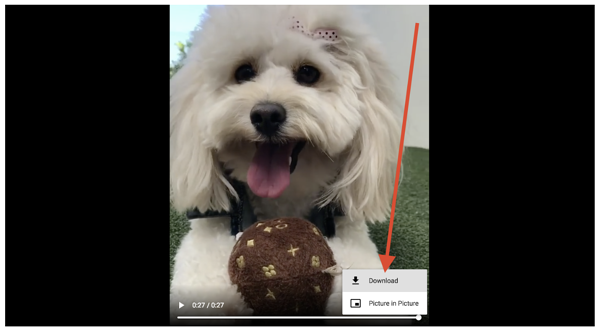 how-to-download-instagram-video-pc