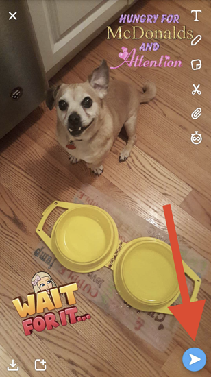 share-your-snap-with-stickers