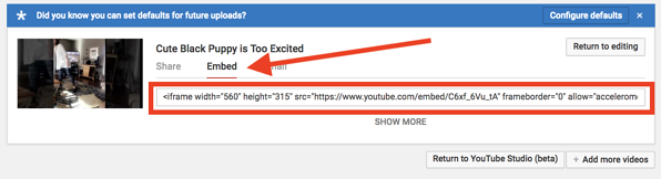 can-unlisted-youtube-videos-be-embedded-yes