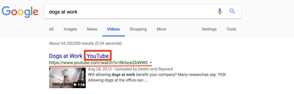 youtube-video-public-search-results