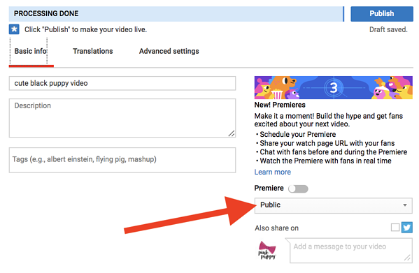 youtube-video-settings