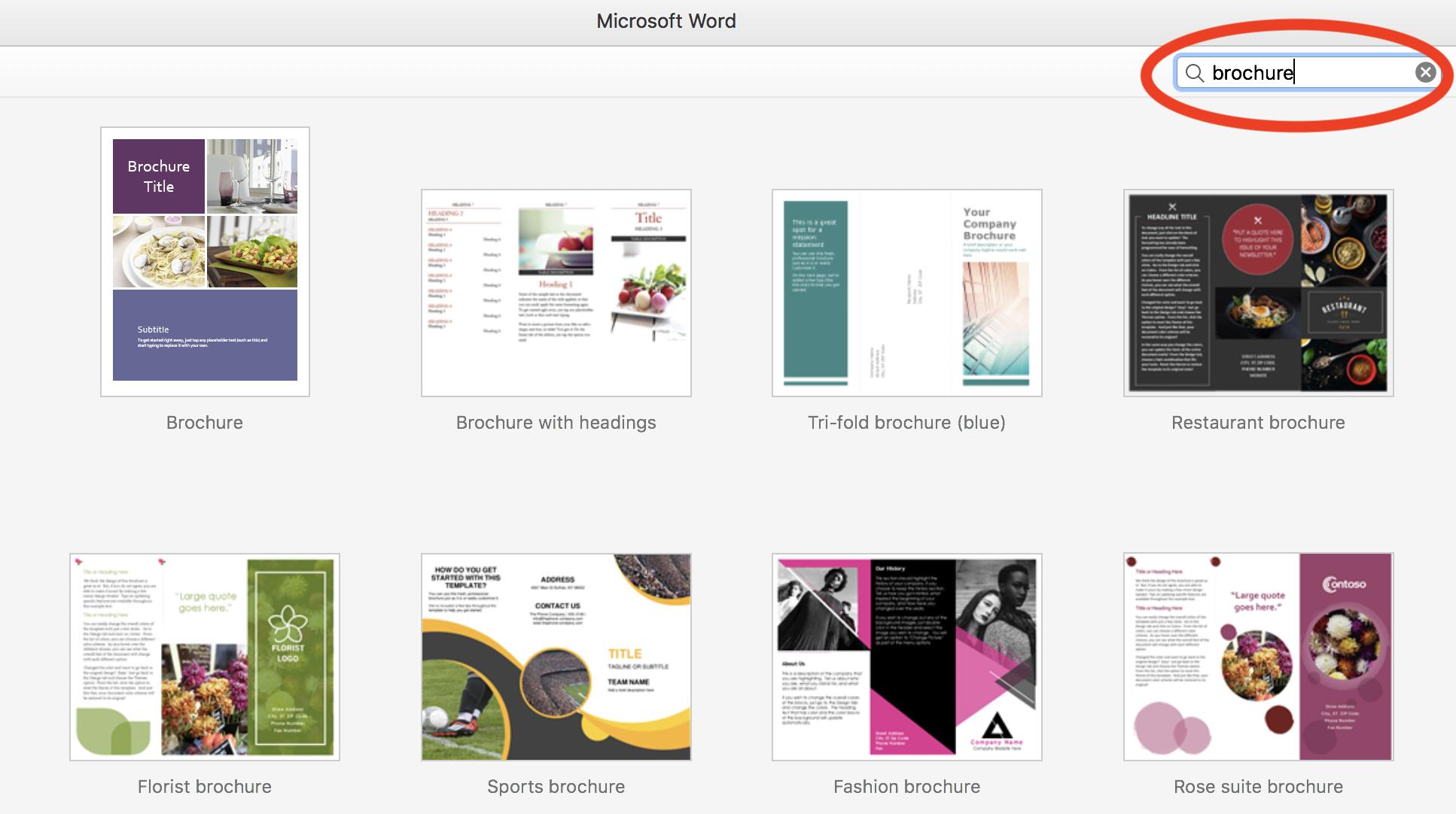 word template brochure tri fold