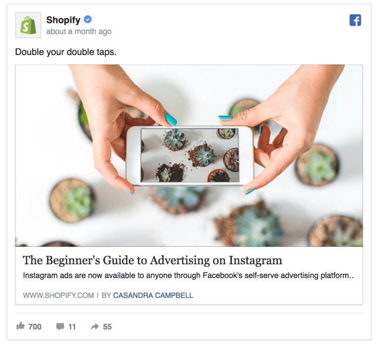 Shopify Facebook Ad