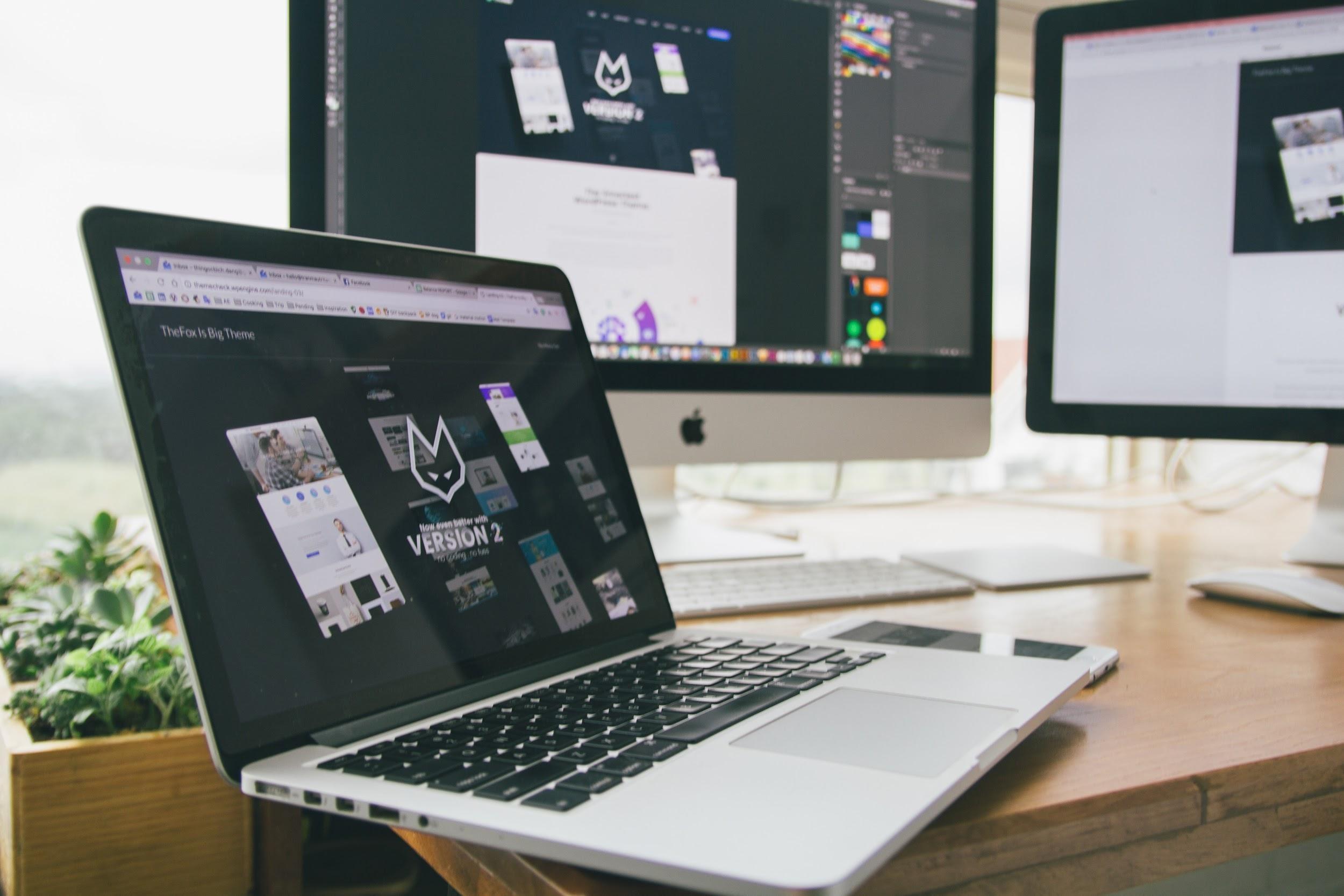 brand identity web design
