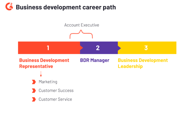 business development career path outline
