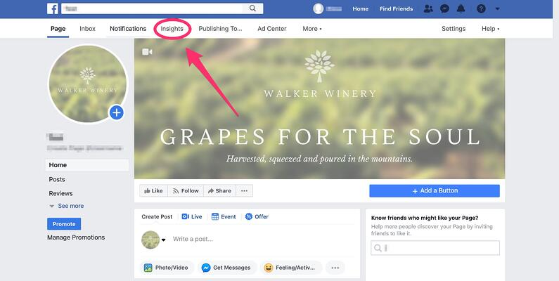 walker winery facebook page (pointing to the insights tab)