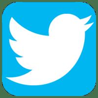 delete twitter logo