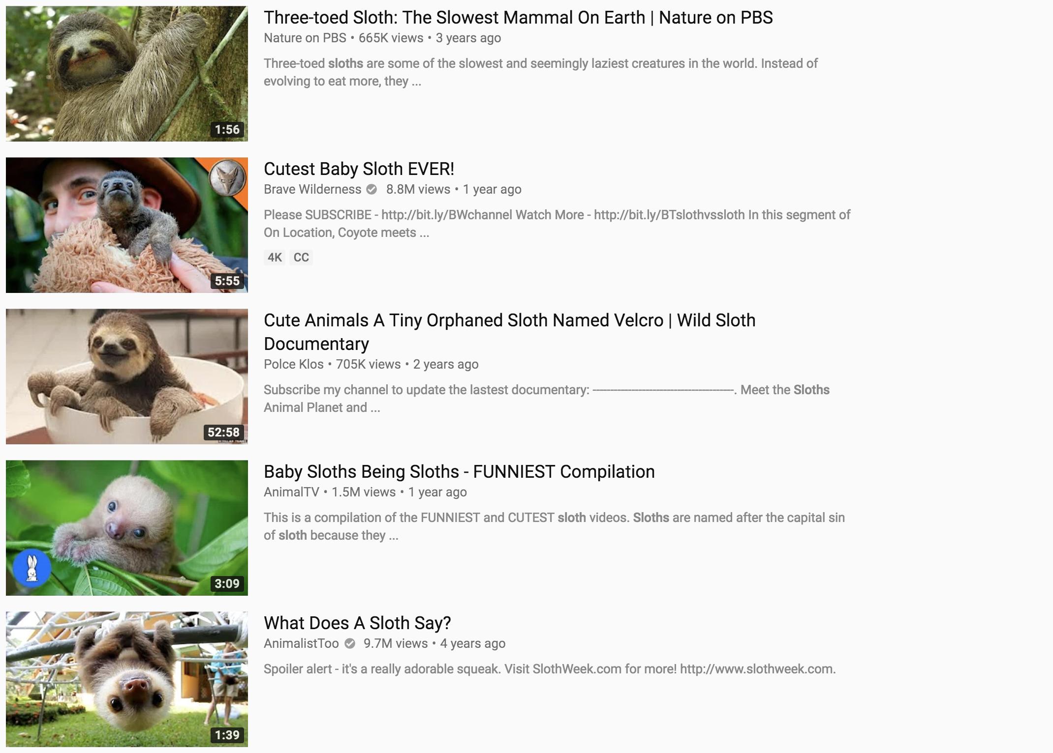 cute-animal-thumbnail