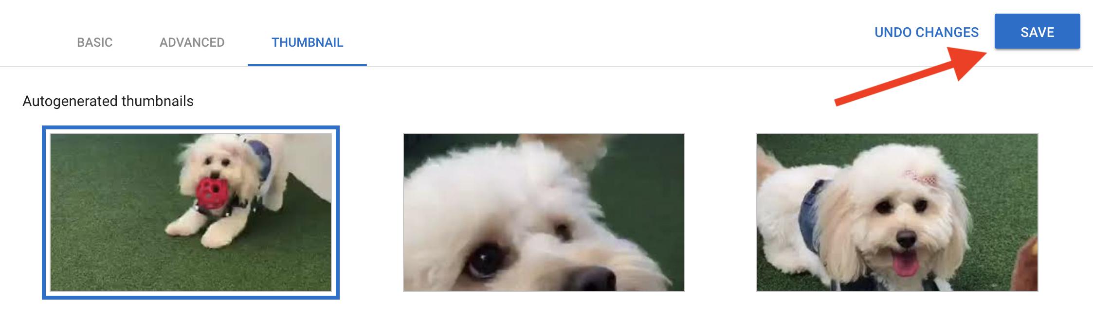 save-youtube-thumbnail
