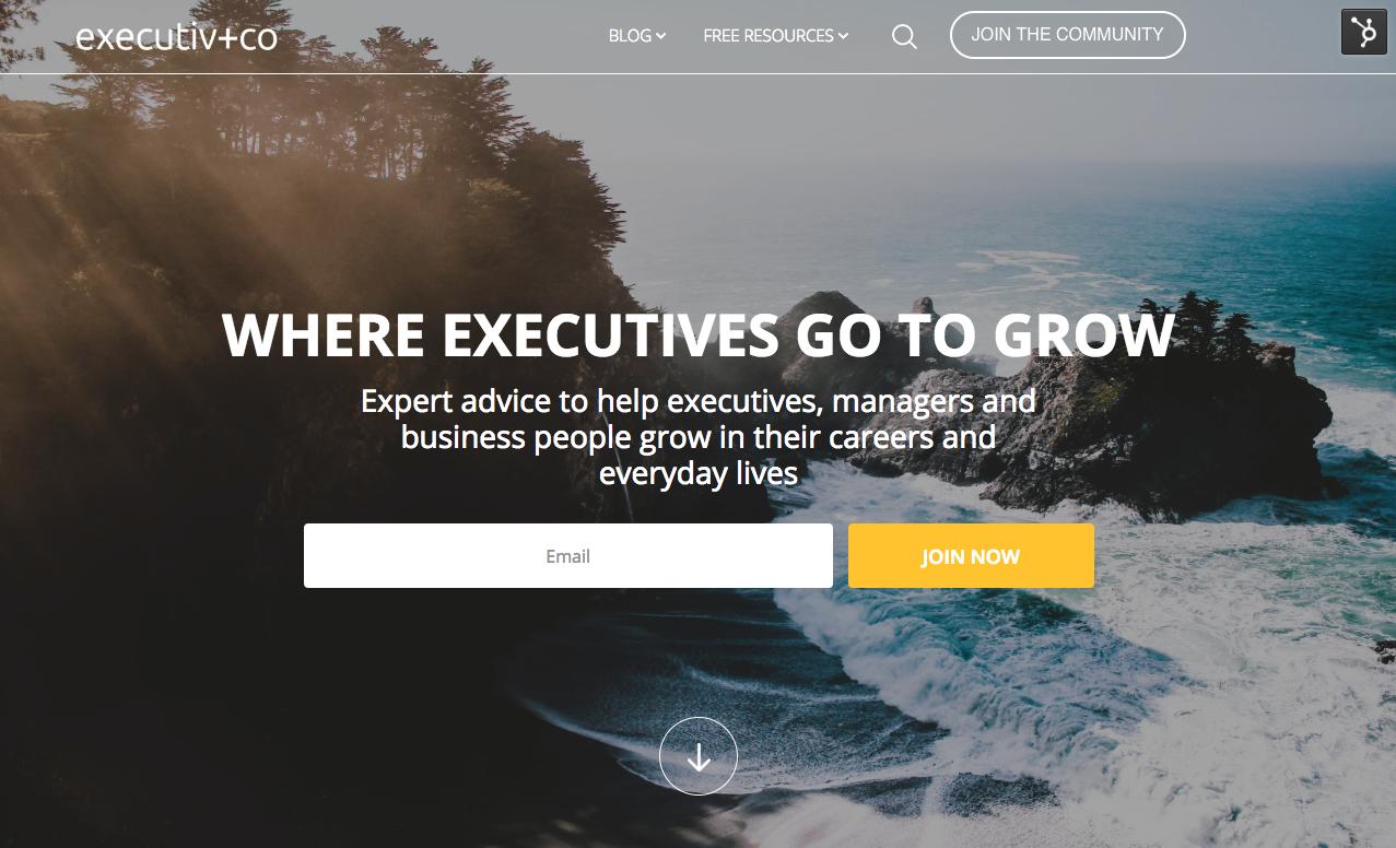 Executiv.Co Home Page